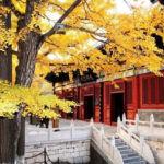 Храм Хунло