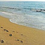 фото пляжа Алании