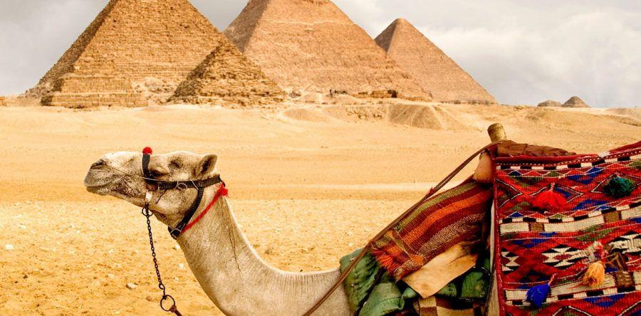Туры в Египет 2020