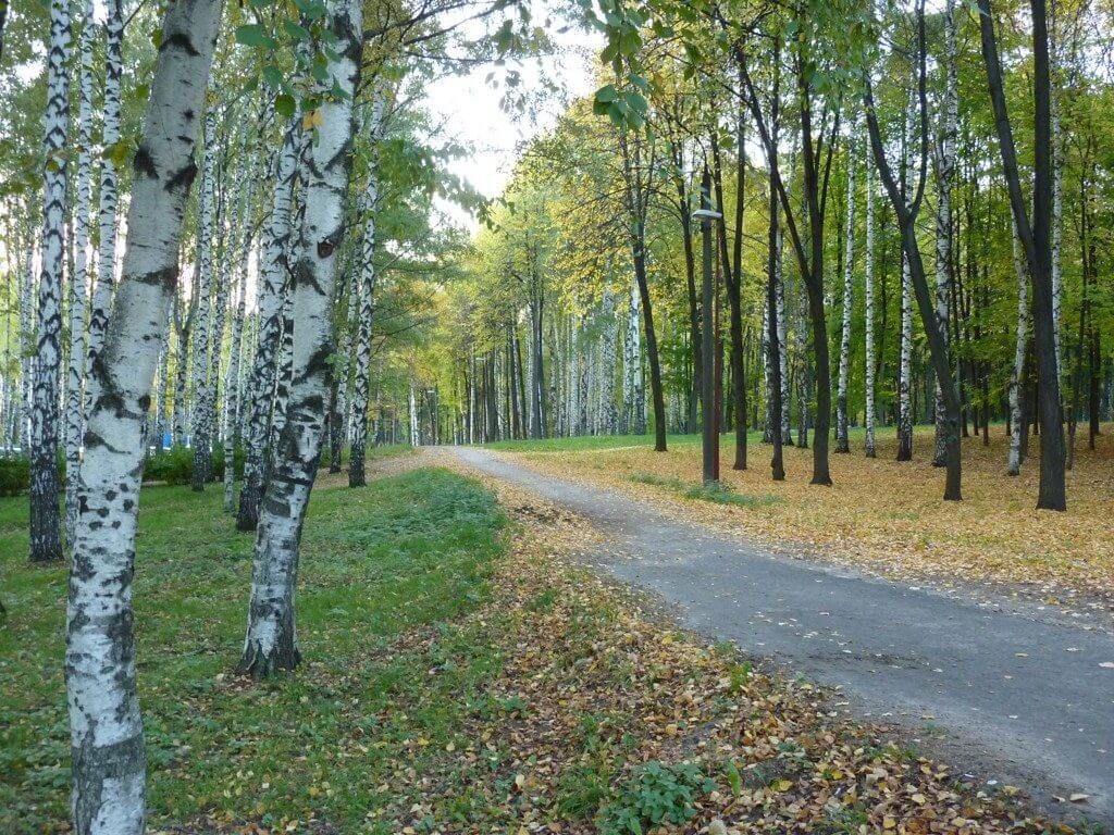 фото парка в Нижнем Новгороде