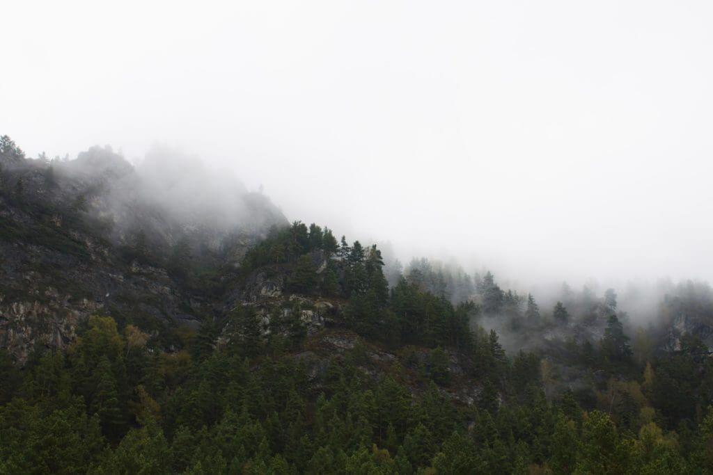 фото гора в тумане