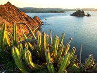 Горячая Мексика: туры, цены 2018 и возможные варианты путешествия
