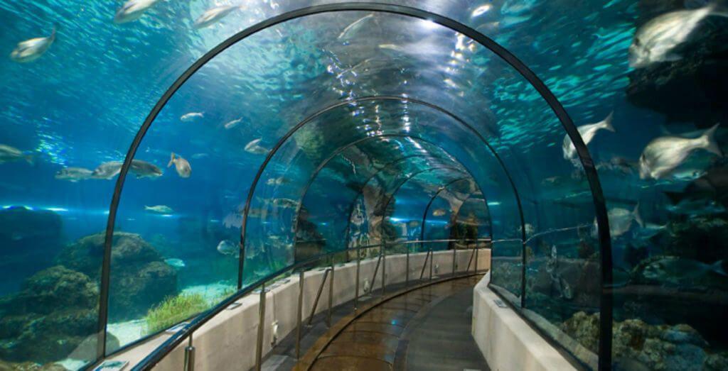 фото аквариума Барселоны