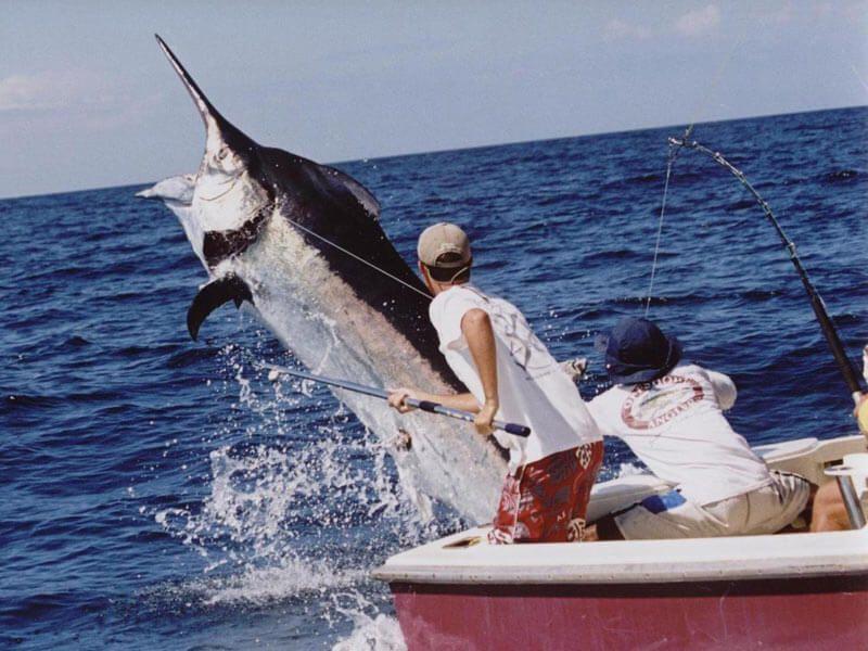 фото океанической рыбалки на Мальдивах