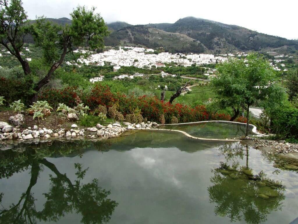 фото Ботанического сада Малаги