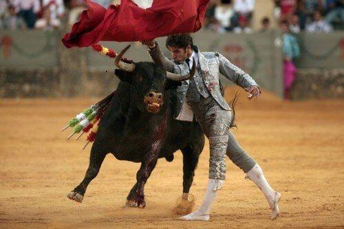 фото испанской корриды