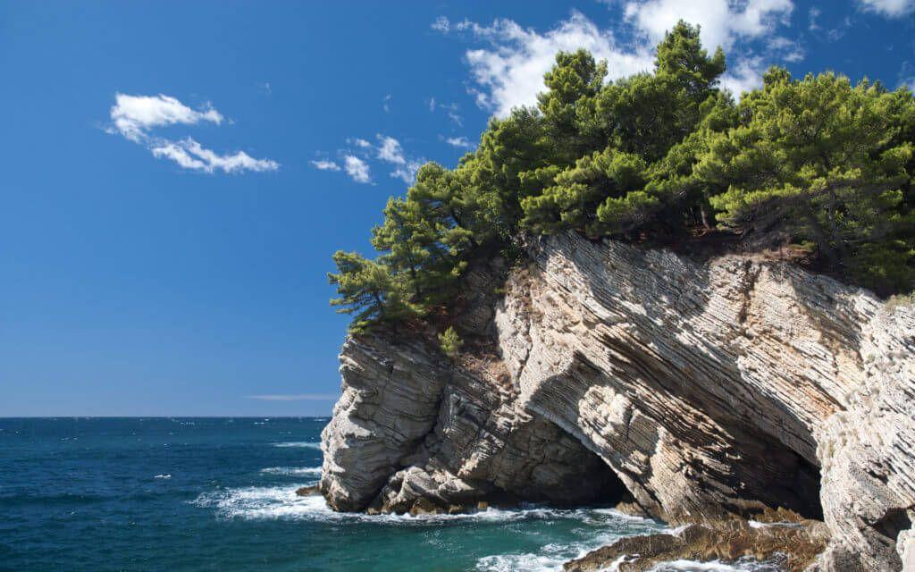 фото скалы и сосны возле моря