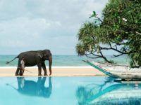 Кому придется по душе Шри-Ланка?
