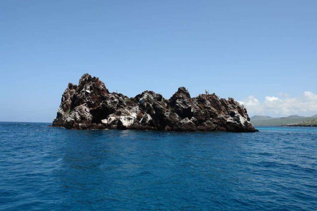 Корона дьявола на Галапагосских островах