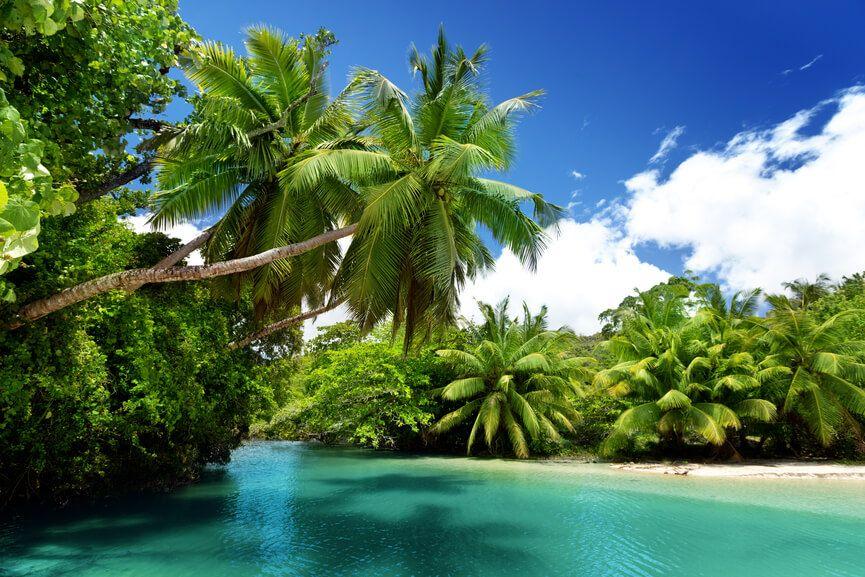 фото природы на острове Маэ, Сейшельские острова