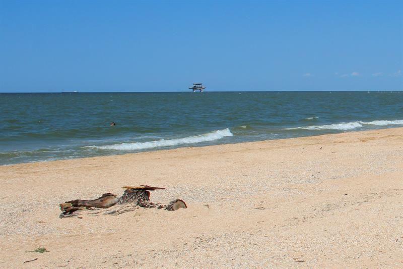Дикий пляж в Голубицкой