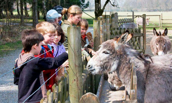 Зоопарк Хеллабрунн