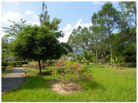 Парк легенд Лангкави