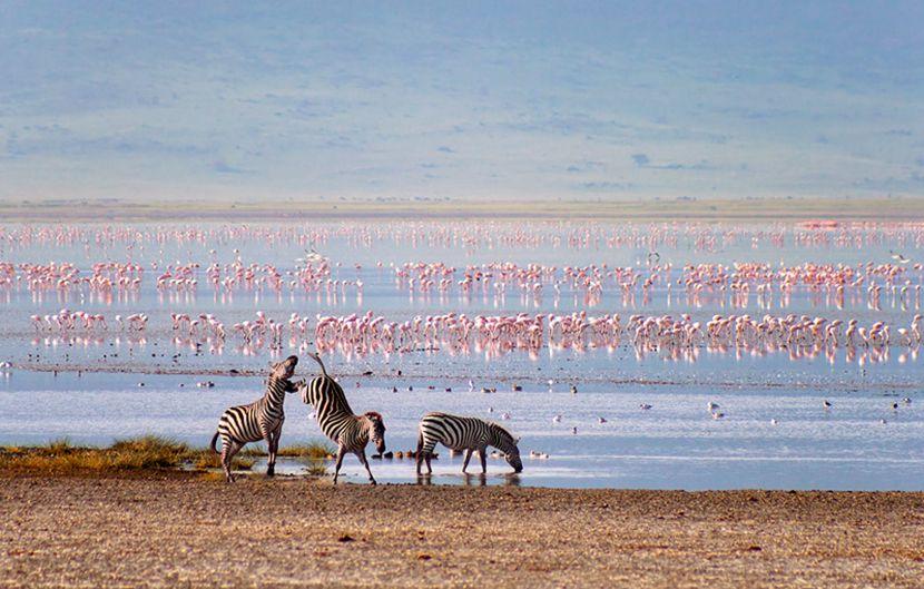 озеро Магади