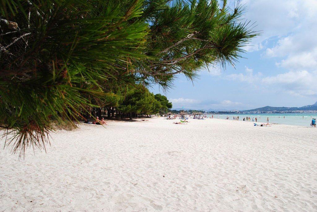 Майорка пляж Алькудия