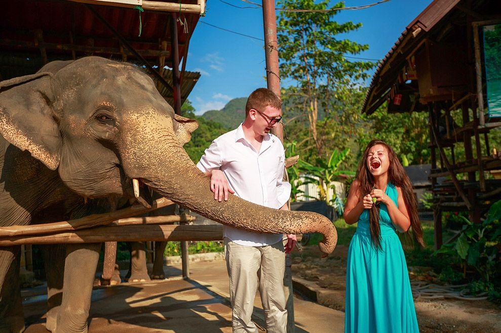 Паттайя слоновья деревня