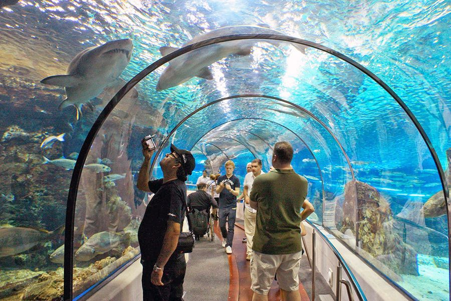 аквариум Хургады