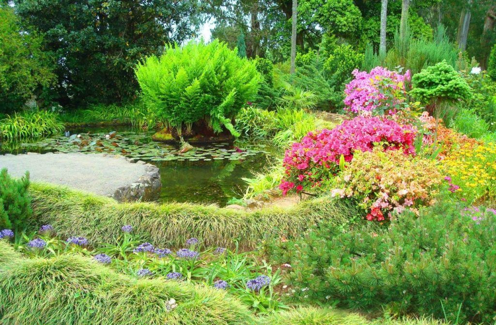 Ботанический сад близ Батуми