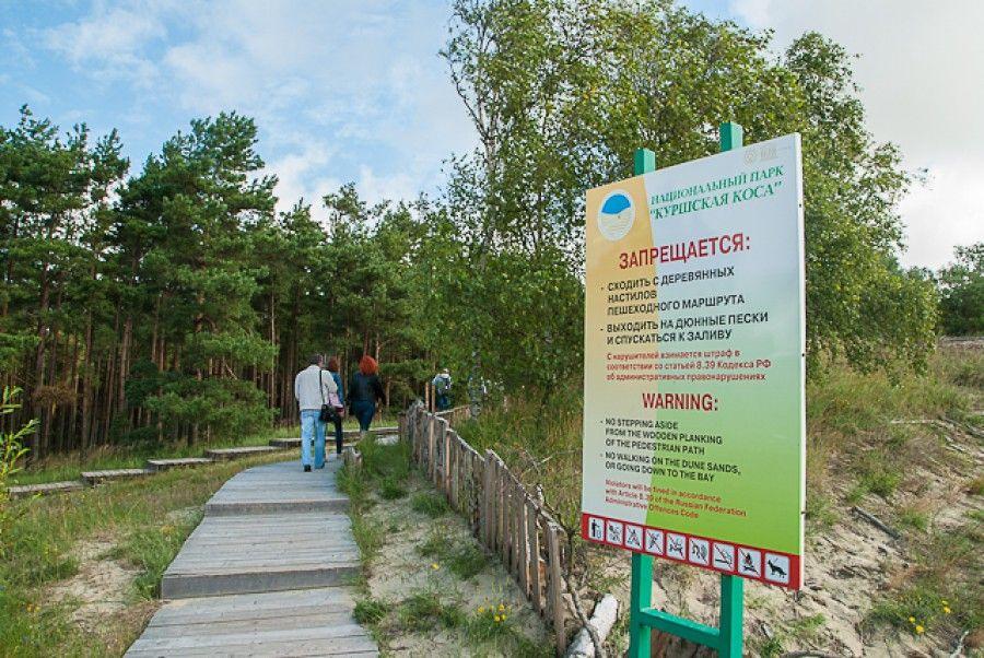 """Правила посещения национального парка """"Куршская коса"""""""