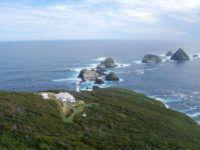 Остров Матсайкер в Тасмании или увлекательное приключение для влюбленных.