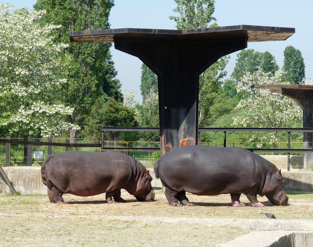 Зоопарк София