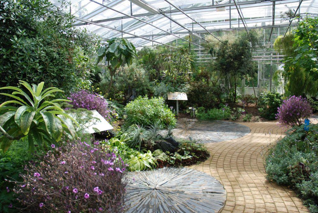 Ботанический сад в Бресте, Беларусь