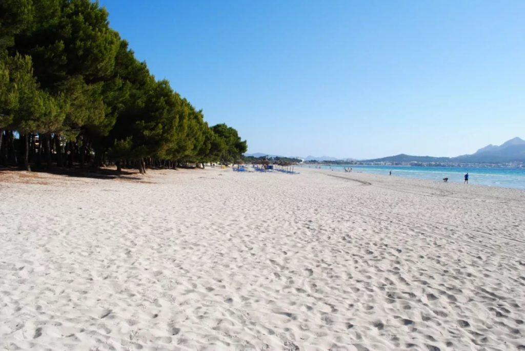 Пляжи курорта Балчик