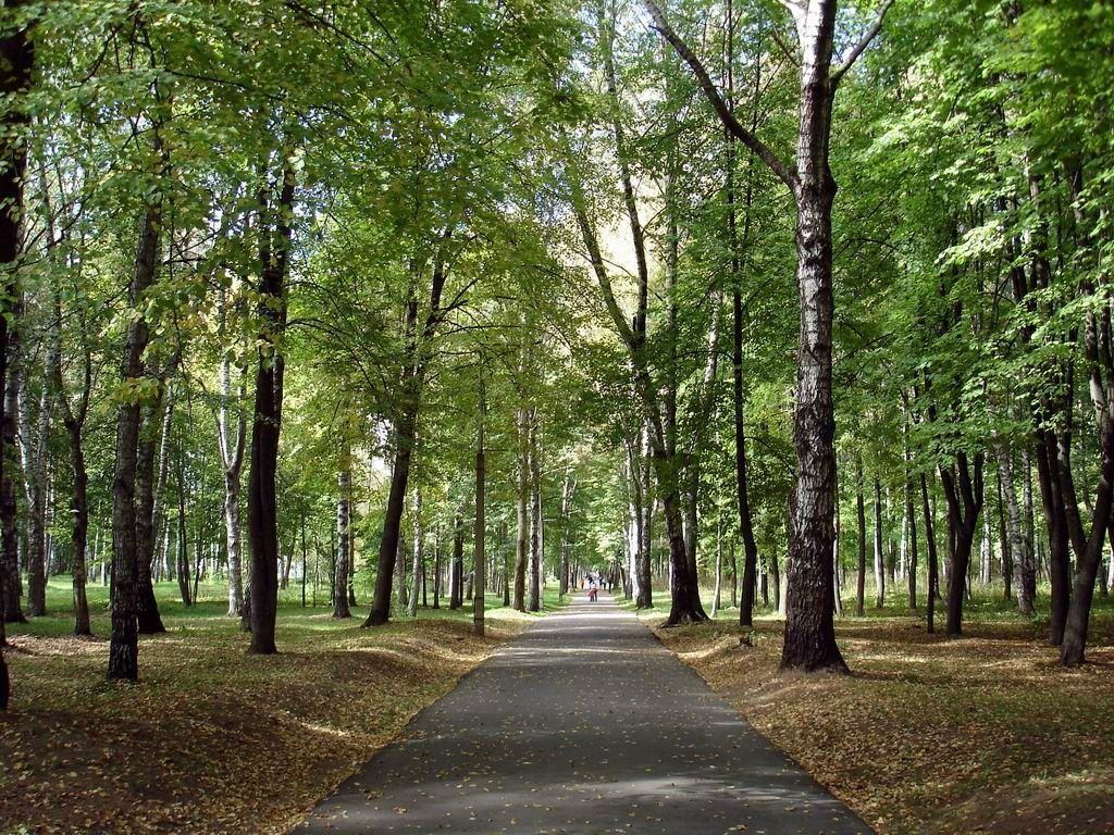 Парк имени Советской Армии, Витебск