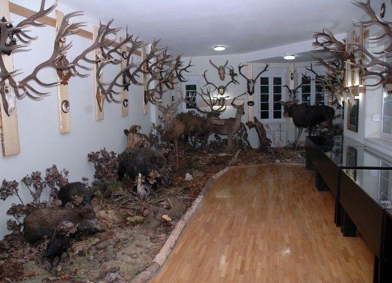Музей охоты в Загребе