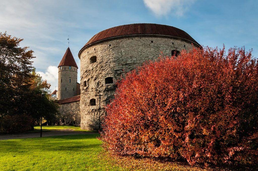 "Башня ""Толстая Маргарита"" В Таллине"