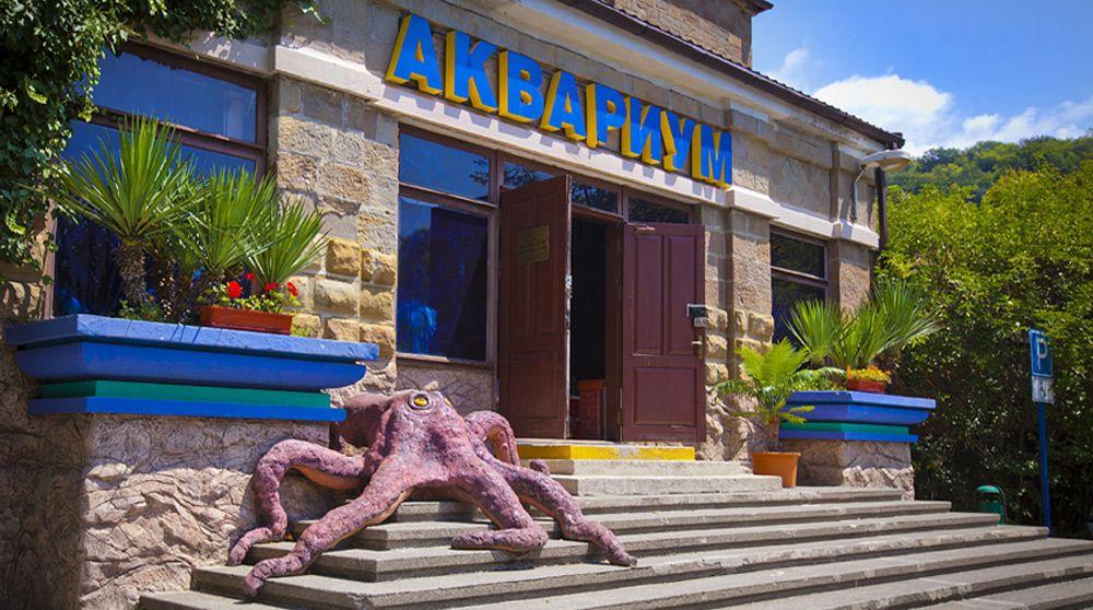 аквариум в Мацесте