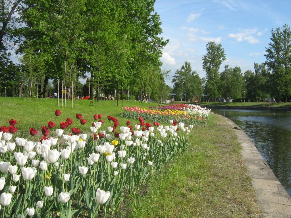 Городской сад Колпино