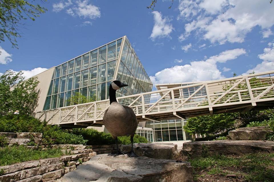 Музей природы США Пегги Ноутберт в Чикаго