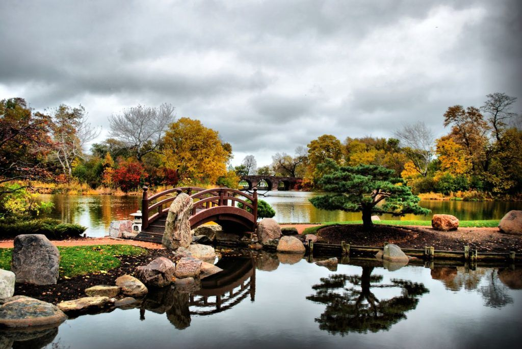 Джексон-парк в Чикаго