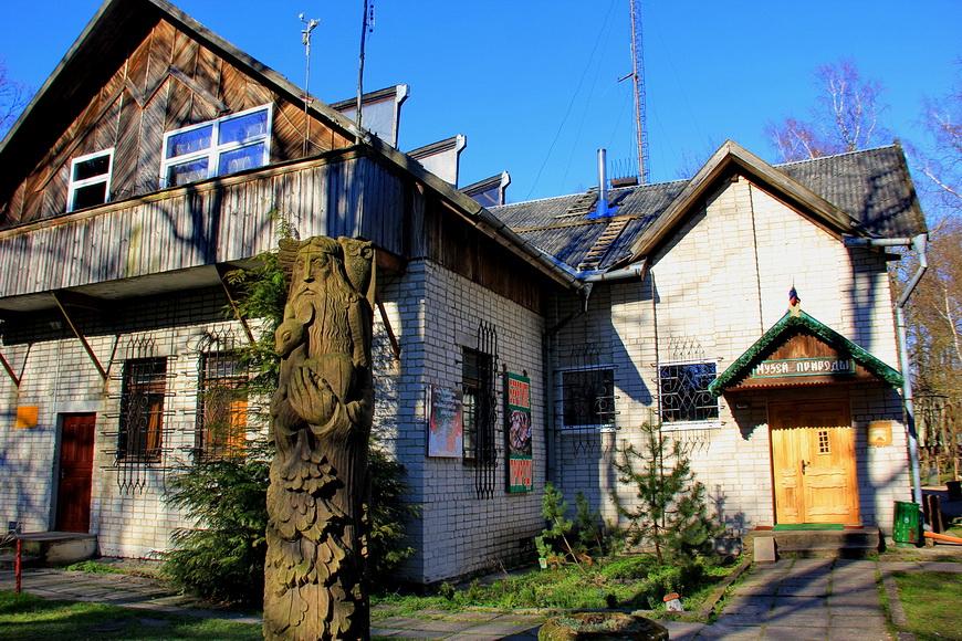 Музей природы в Светлогорске