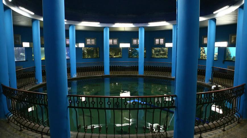 Севастопольский музей-аквариум