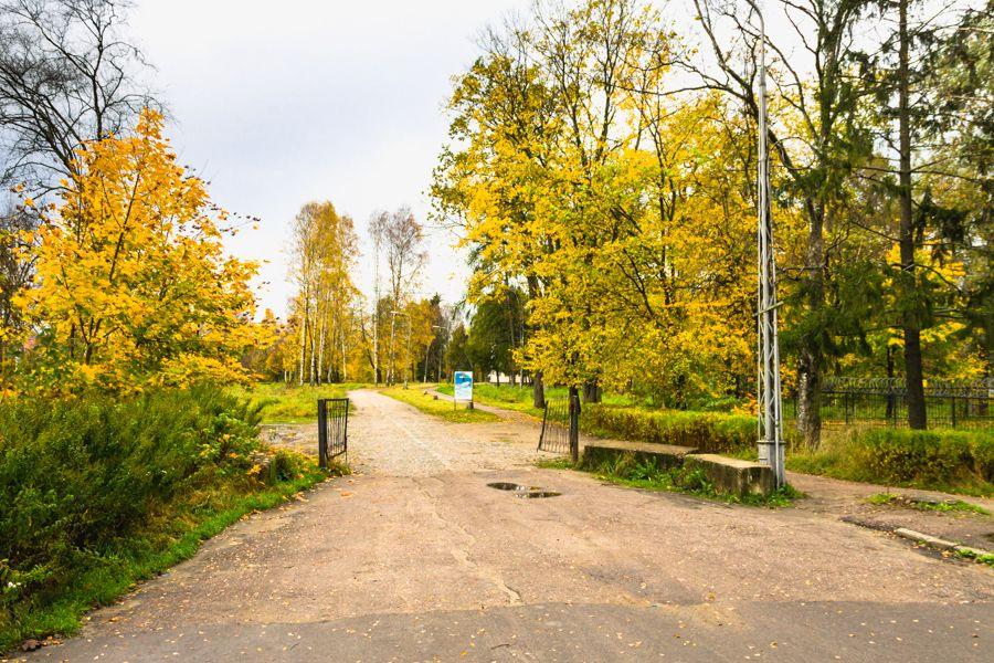 Городской парк в Олонце