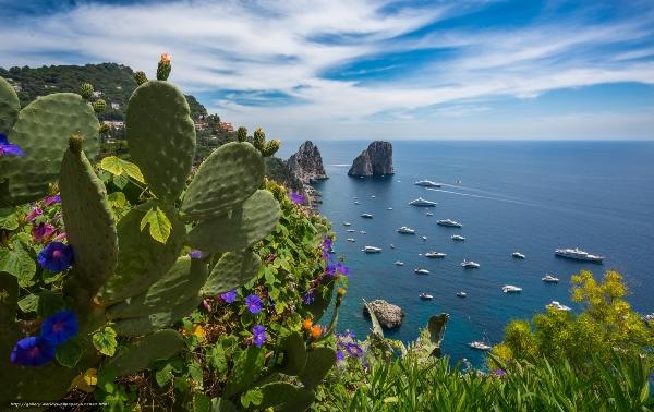 средиземноморская природа