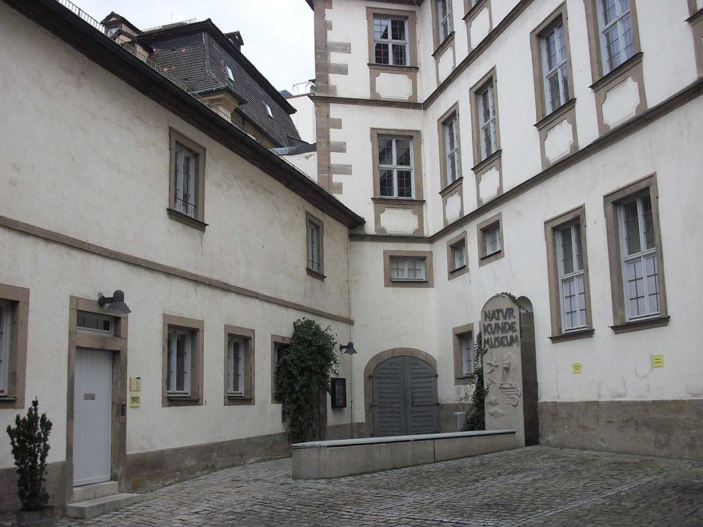 Бамбергский музей естествознания