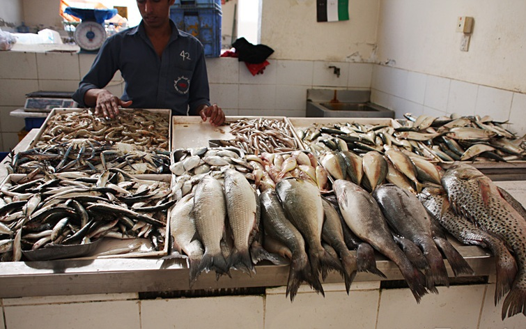 Рыбный рынок в Аджмане