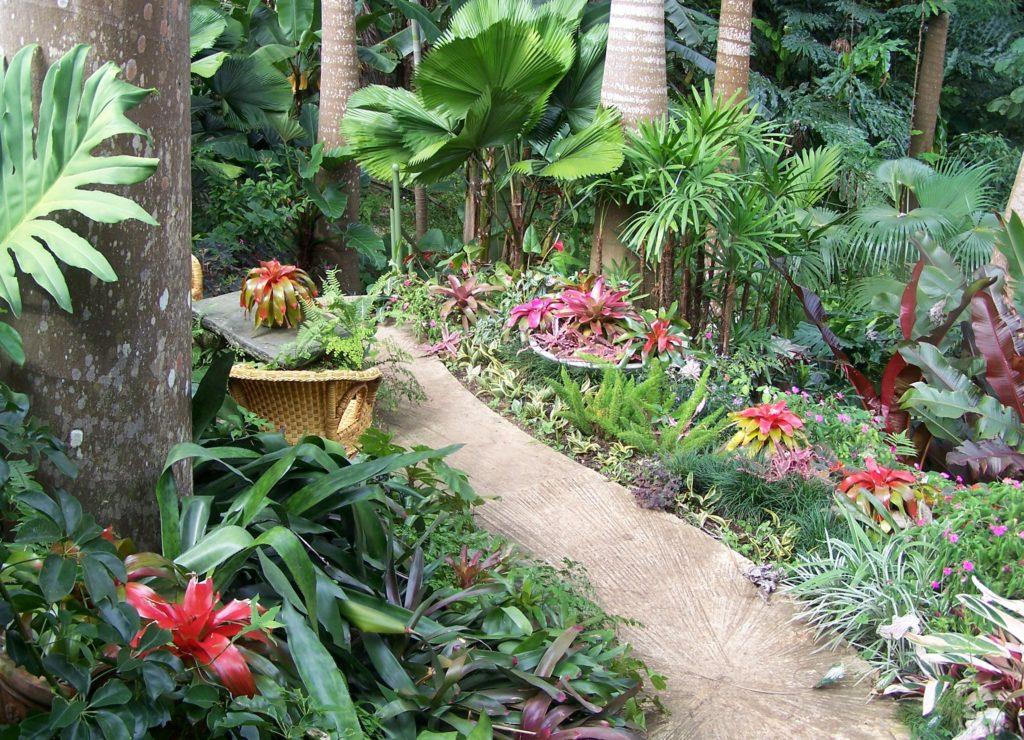 Ботанический сад в Бриджтауне