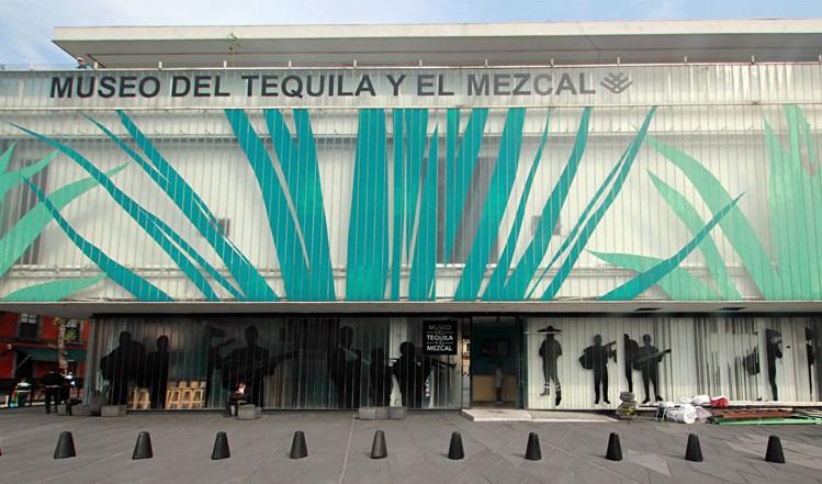 Музей текилы и мескаля в Мехико