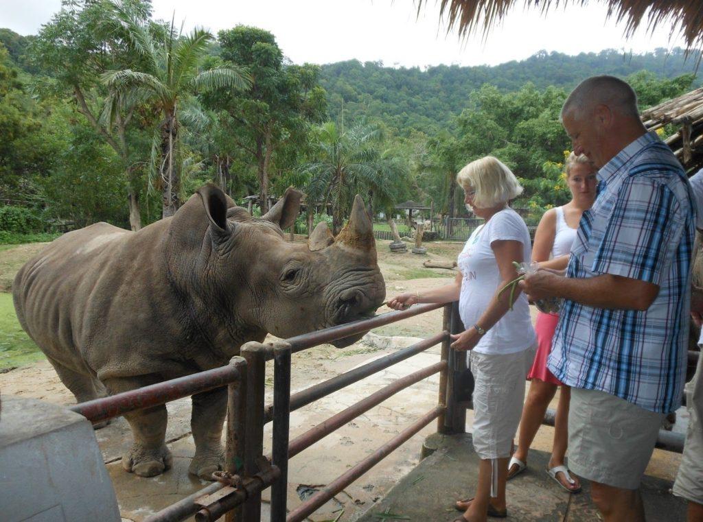 Зоопарк «Као Кхео» в Паттайе