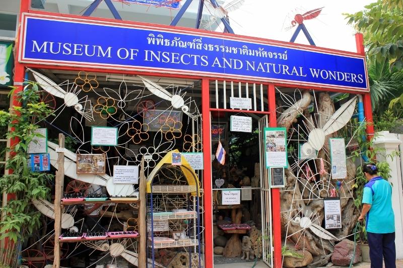 Музей насекомых и чудес природы в Чиангмае