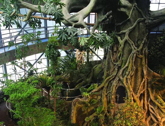 "Зоологический музей ""Зеленая планета"" в Дубае"