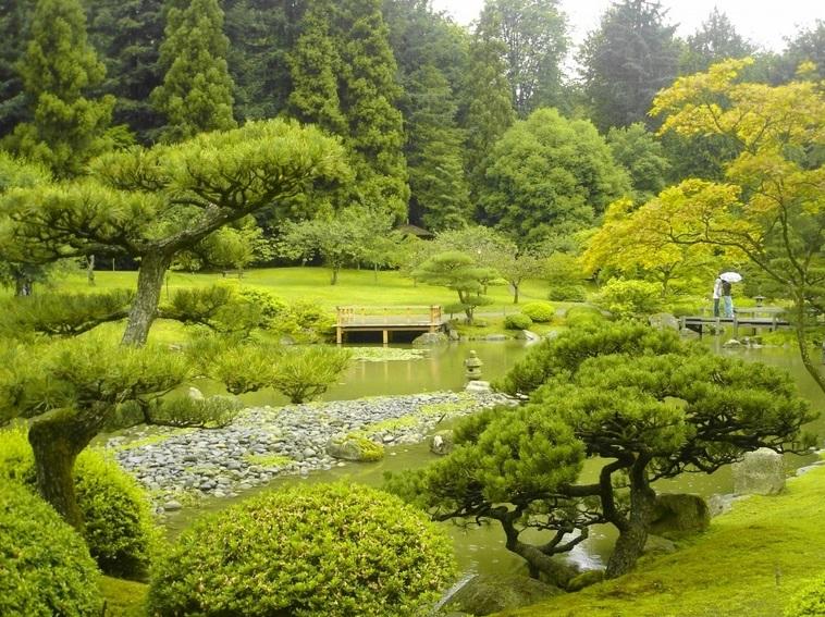 Китайский сад Сиэтла