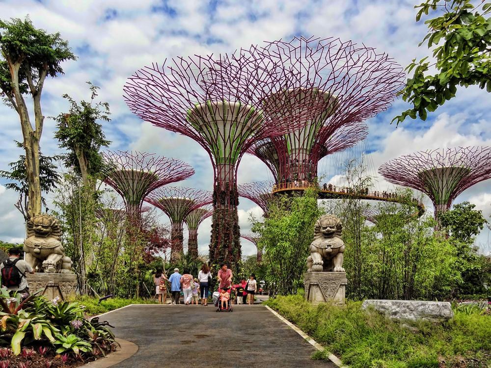 """Сады """"Gardens by the Bay"""" в Сингапуре"""