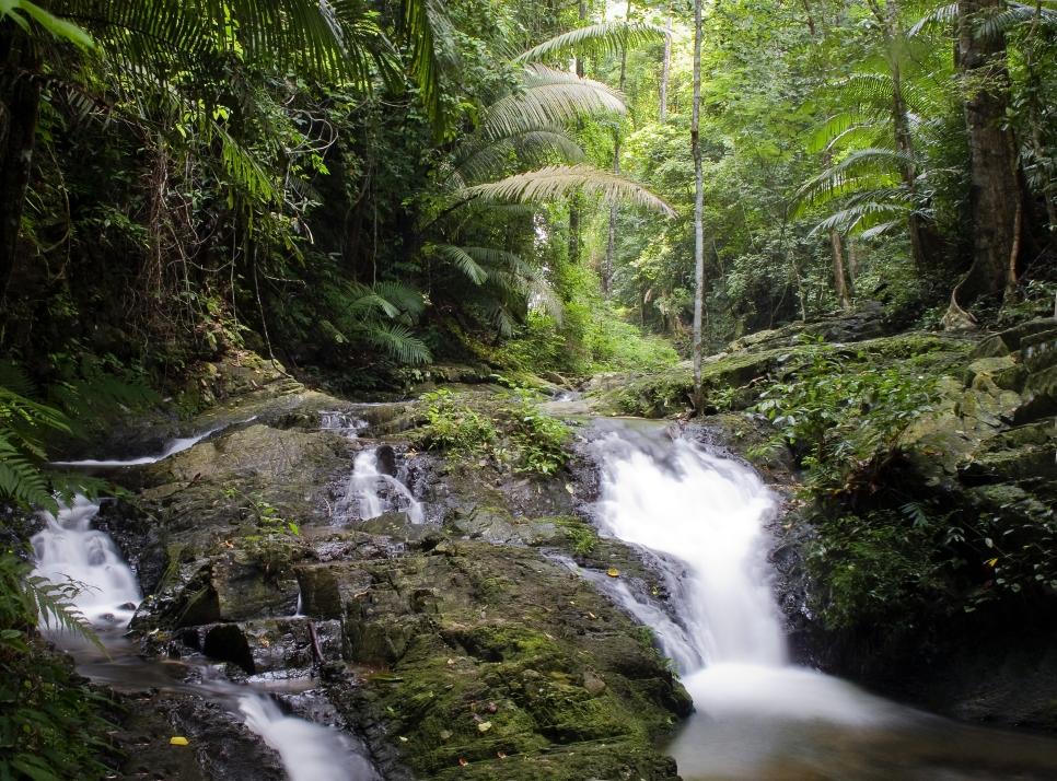 Национальный парк Кхао Пханомбенча, Краби