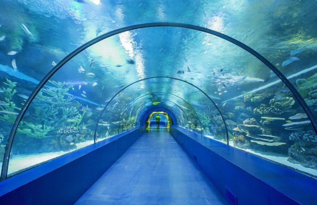 Тоннельный аквариум Антальи