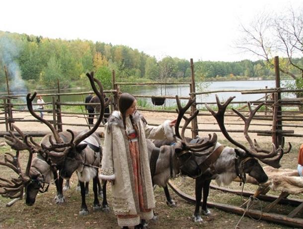 """Ферма """"Северный олень"""" близ Орехово-Зуево"""